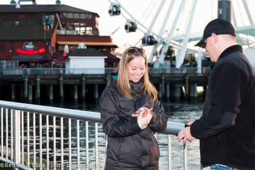 Seattle proposal